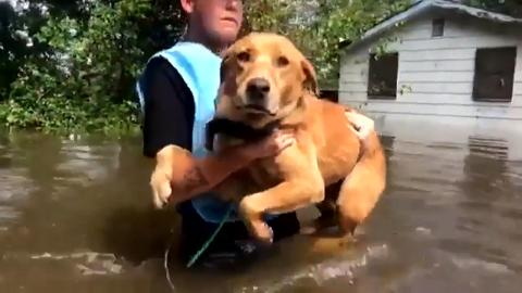 News - More flooding for South Carolina, a week after
